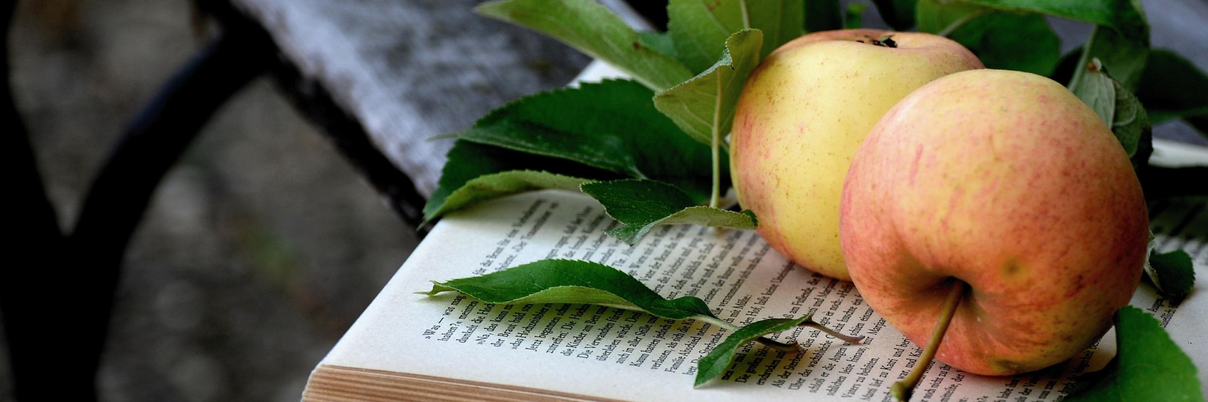 apple-3688919_1920